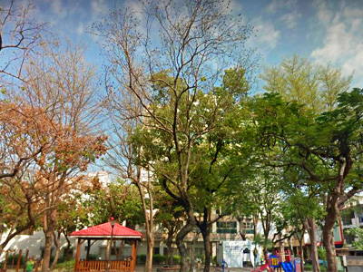 河南公園B